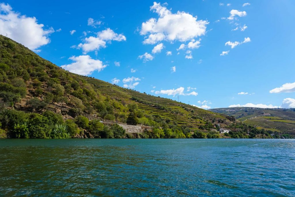 Best private boat cruise in Douro
