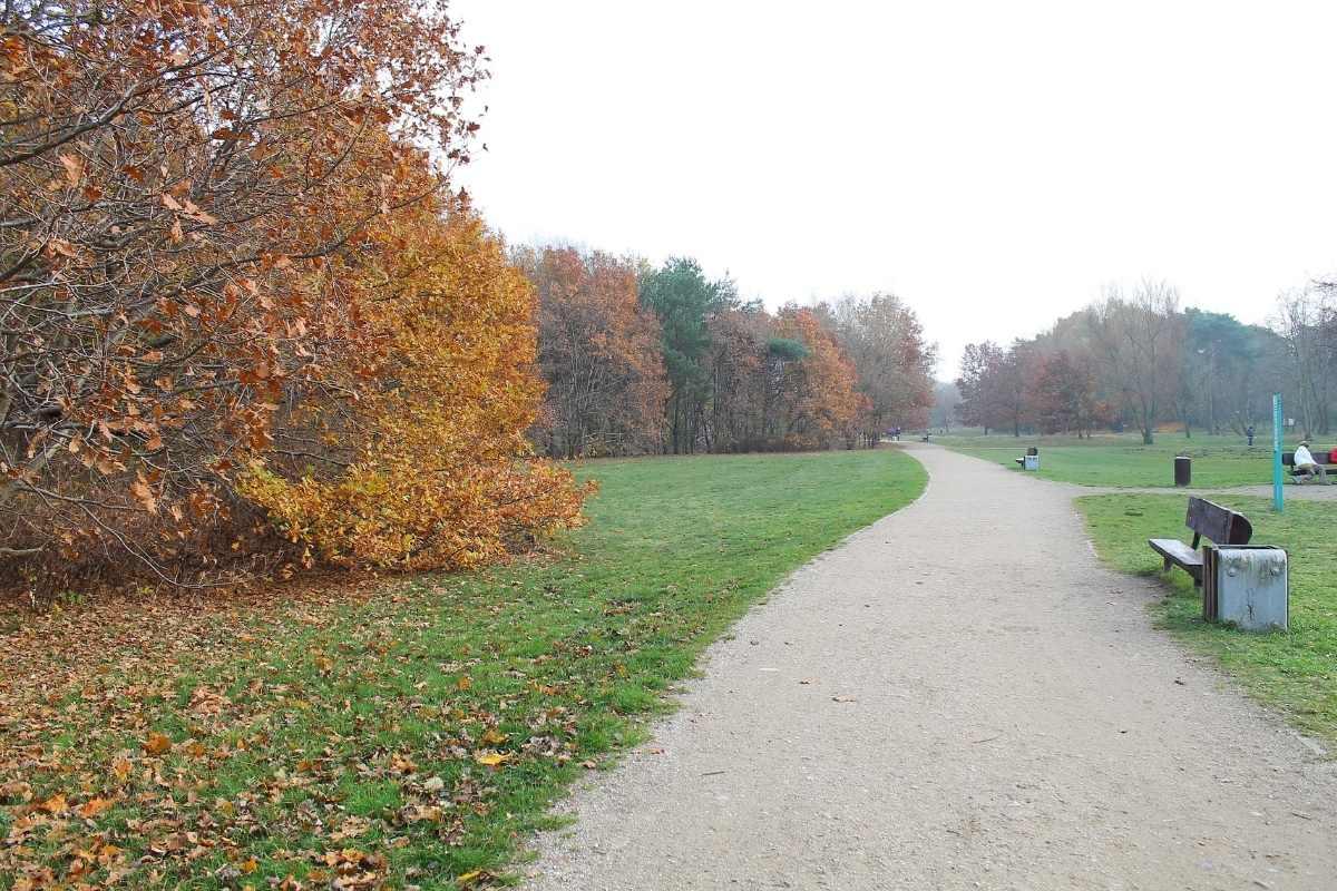 Trójmiejski Park gdansk poland travel guide 55secrets