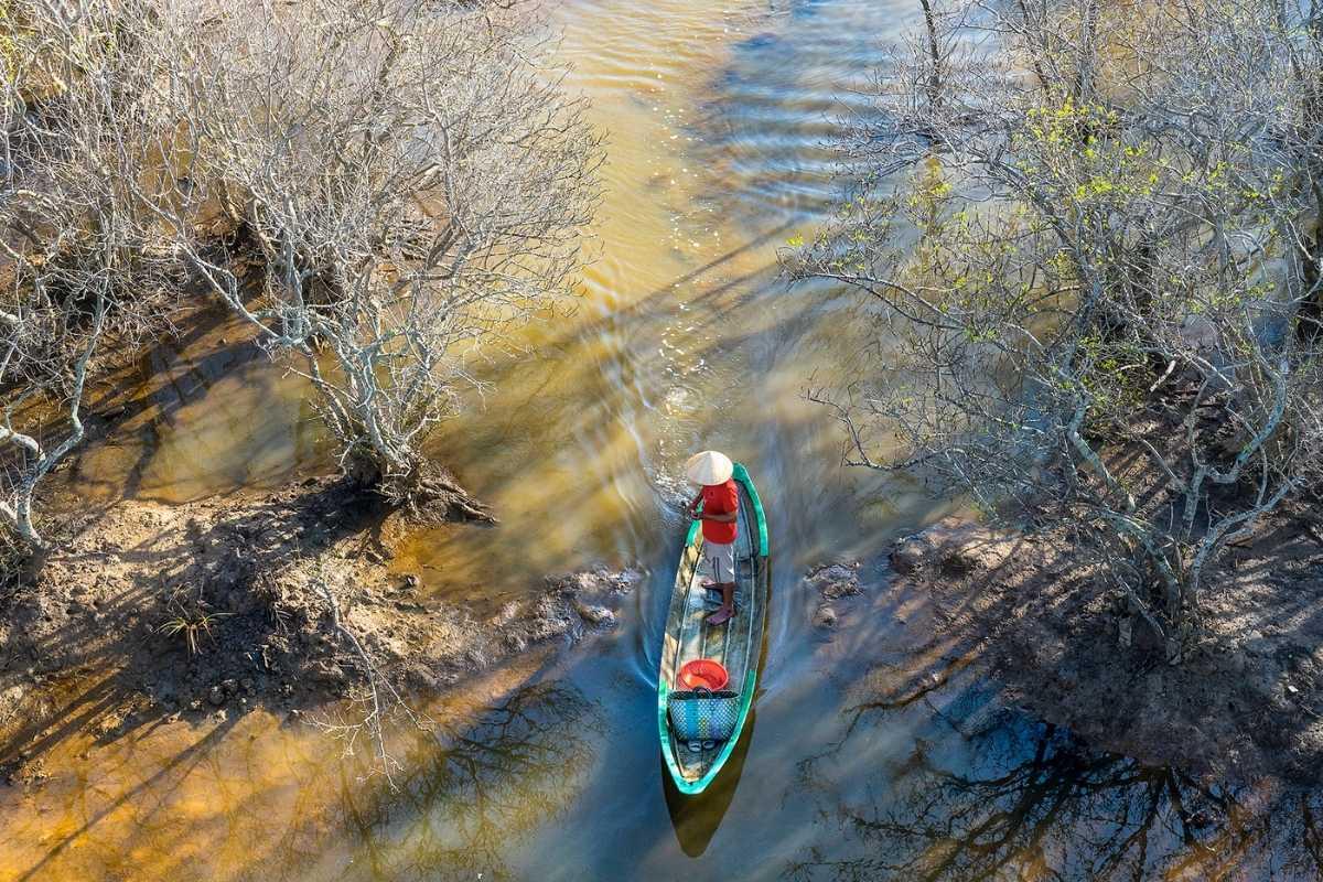 Ru Cha mangrove forest Hue Vetnam Travel Guide Free 55secrets